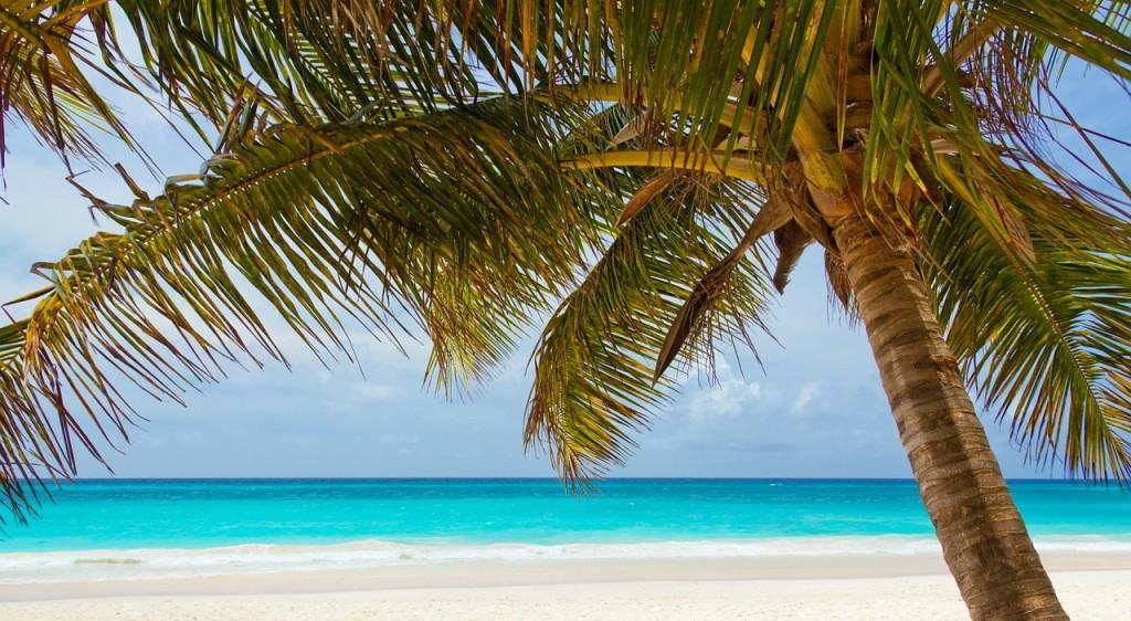 Lust auf Urlaubsfeeling pur?